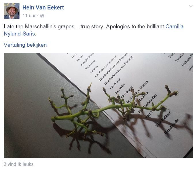Cité - Hein druiven facebookpagina HvE